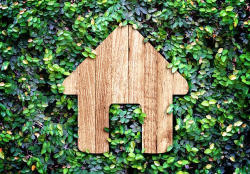 house-in-greenery
